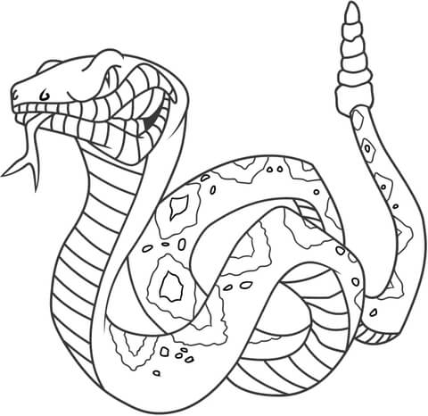 angry rattlesnake coloring page supercoloring com