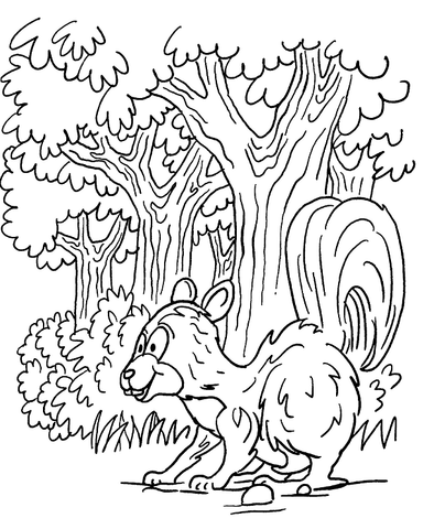 skunk in forest coloring page supercoloring com