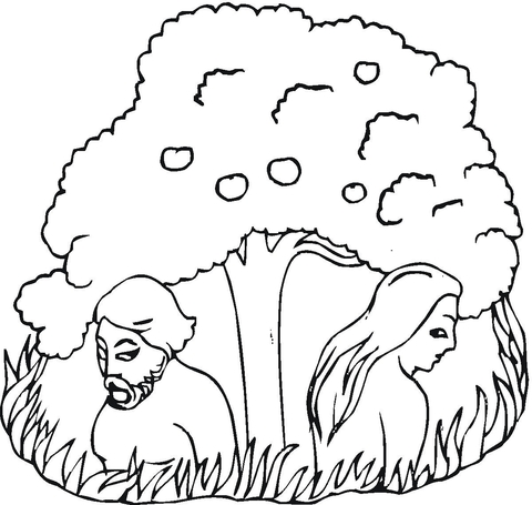 Adam & Eve Coloring Pages   Coloring pages, Bible coloring pages ...   455x480