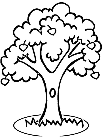 lemon tree coloring page apple tree coloring page supercoloring
