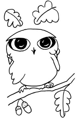funny little owl coloring page super coloring