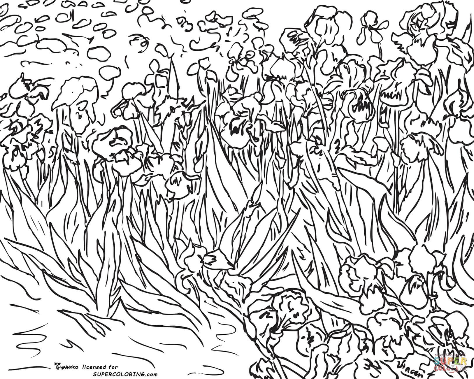Thiel Academy Picture Study Vincent Van Gogh