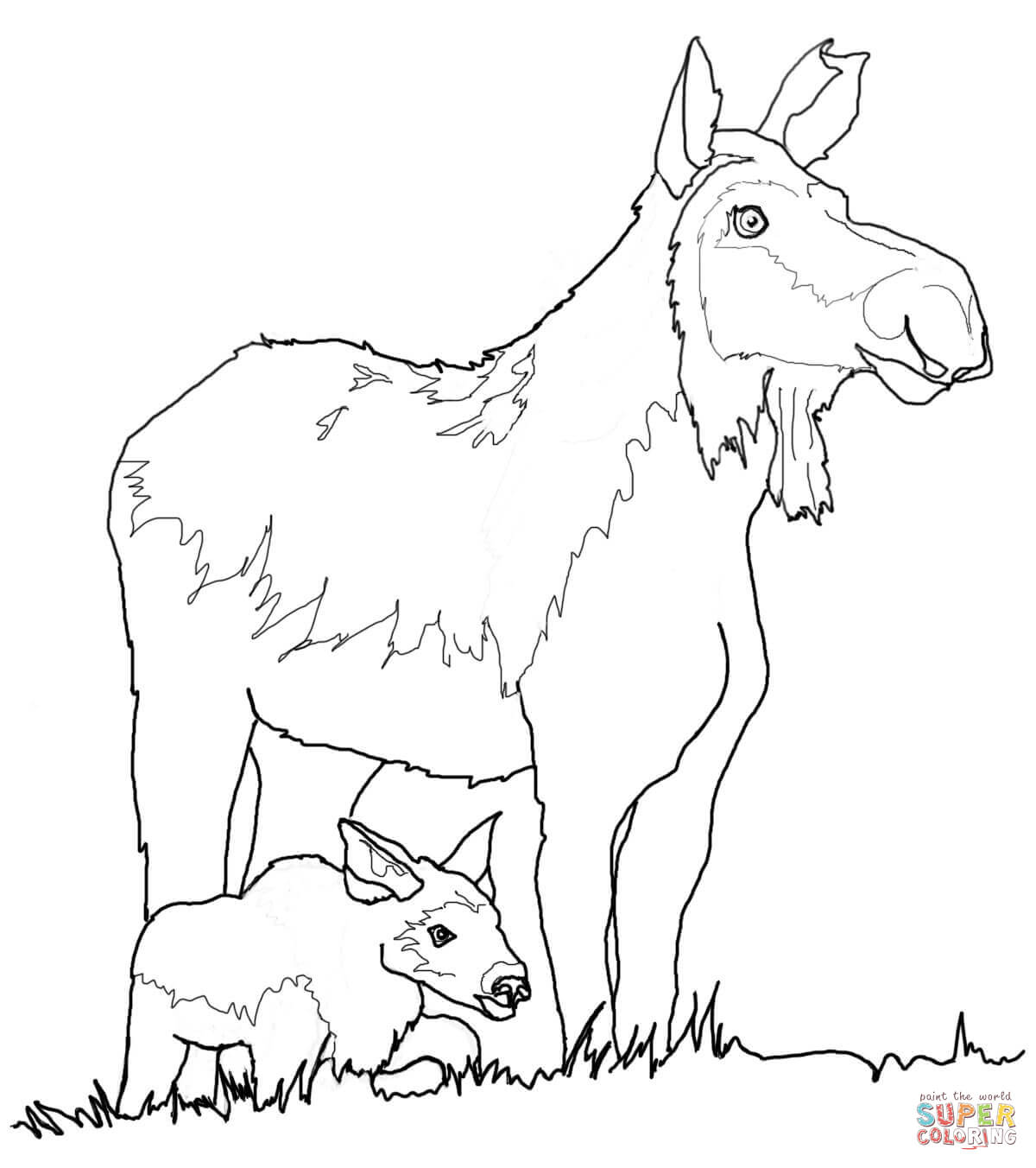 baby cartoon cows coloring pages cooloring com