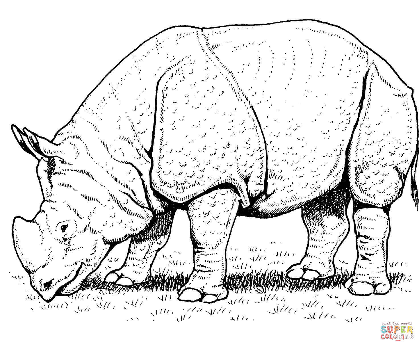indian rhino coloring online