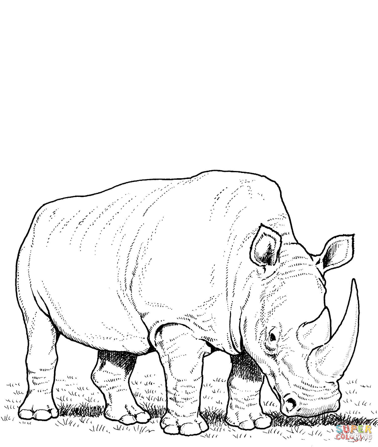 rhinoceros colouring pages page 2