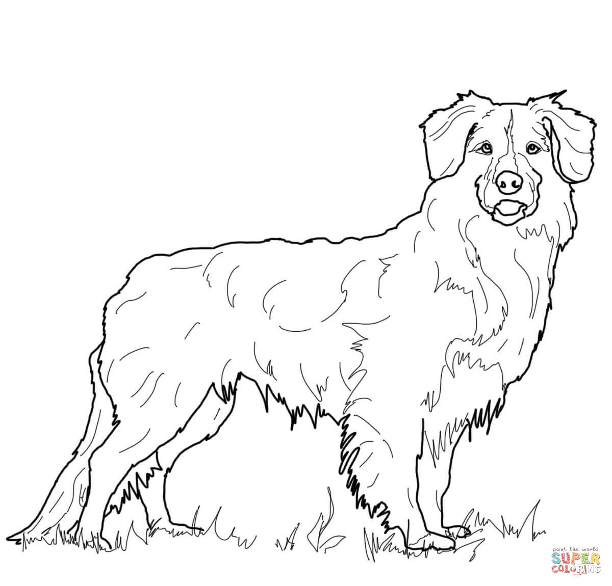 Nova Coloring Pages Coloring Pages