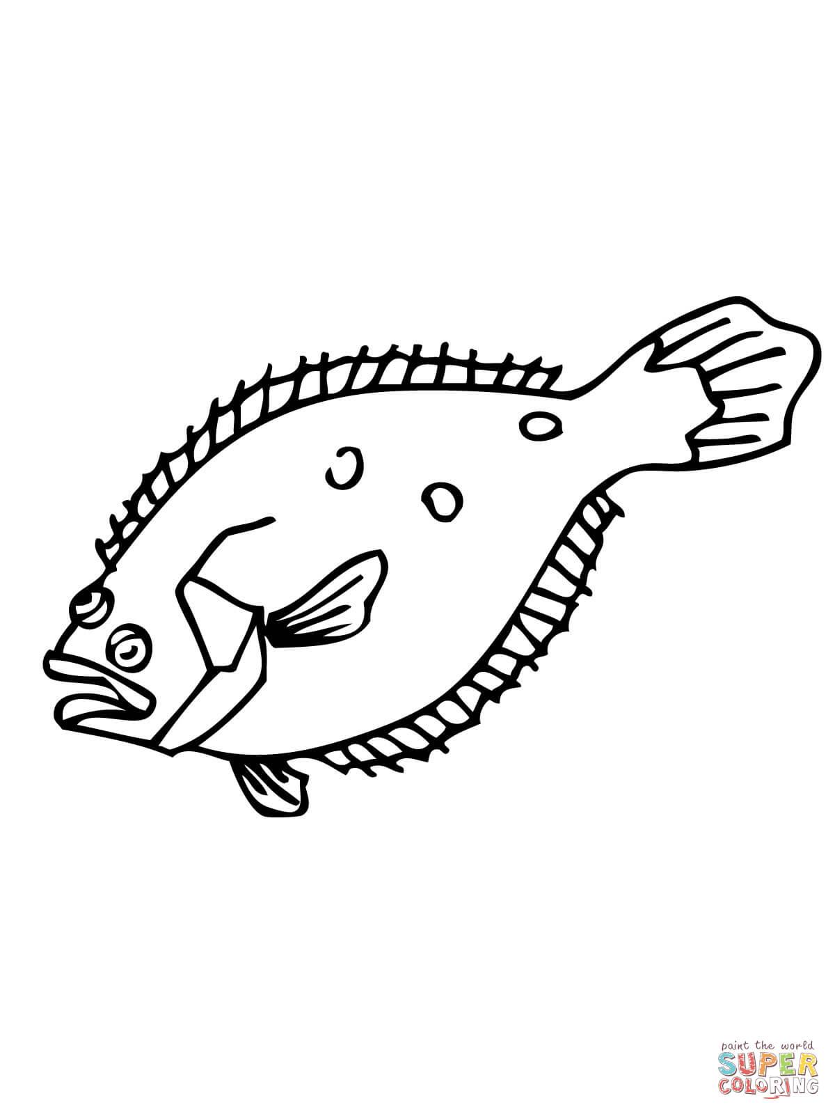Flounder Coloring Online