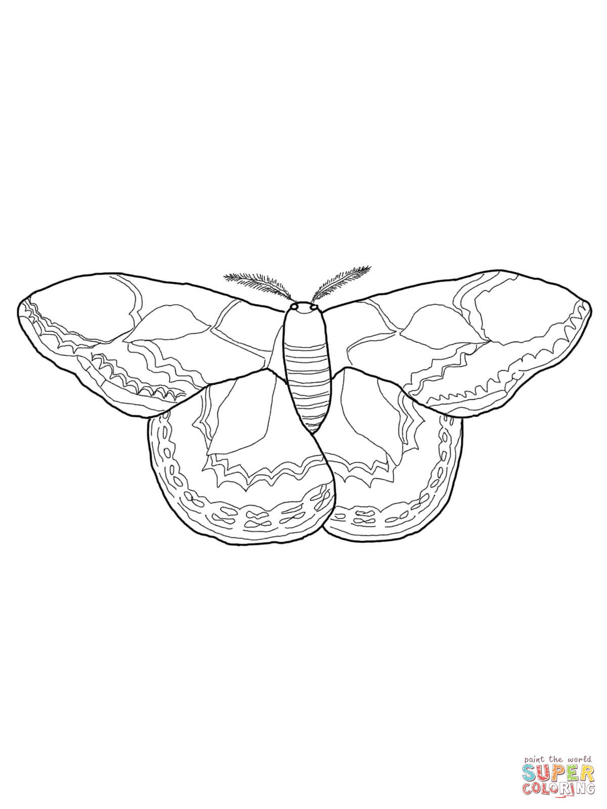 silk moth coloring page tiger swallowtail b fly enchantedlearning