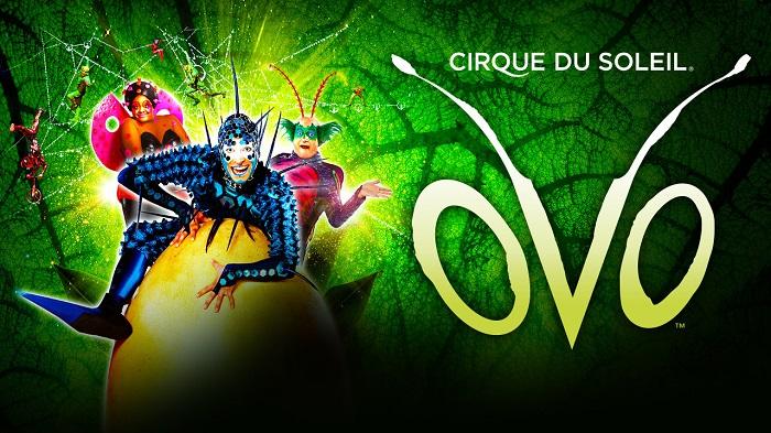 OVO – Cirque du Soleil