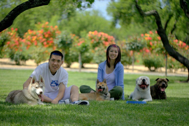 Man and woman with dogs in Sacramento park setting-image.