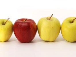 6 Diferenças de Comportamento entre Executivos e Empreendedores