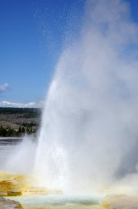 Don't be a spaz! Actually Spasm Geyser is really cool. It is constantly cavorting and bubbling up shutes of water.