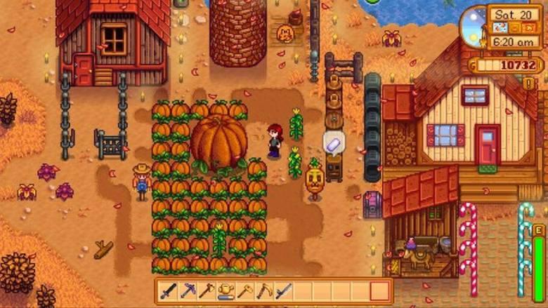 Autumn Pumpkin Patch