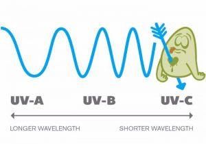 Germicidal ultraviolet light (UV-C) diagram