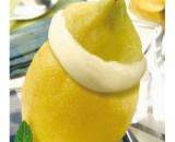 citrons givres 6x 180 ml - Tartufo limoncello
