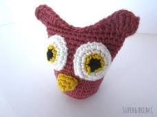 Owl Beak