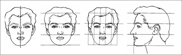 proportion-of-facial-beauty2