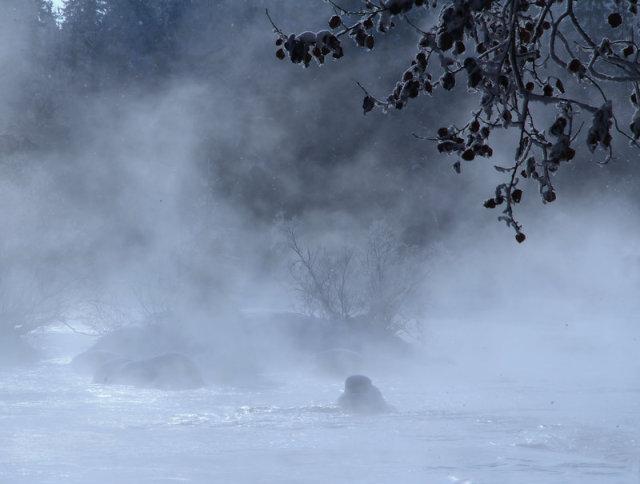 river_steam_by_kariliimatainen-d54kbjc