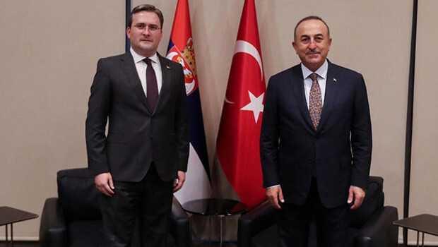Dışişleri Bakanı Çavuşoğlu, Sırp mevkidaşı Selakoviç'le görüştü