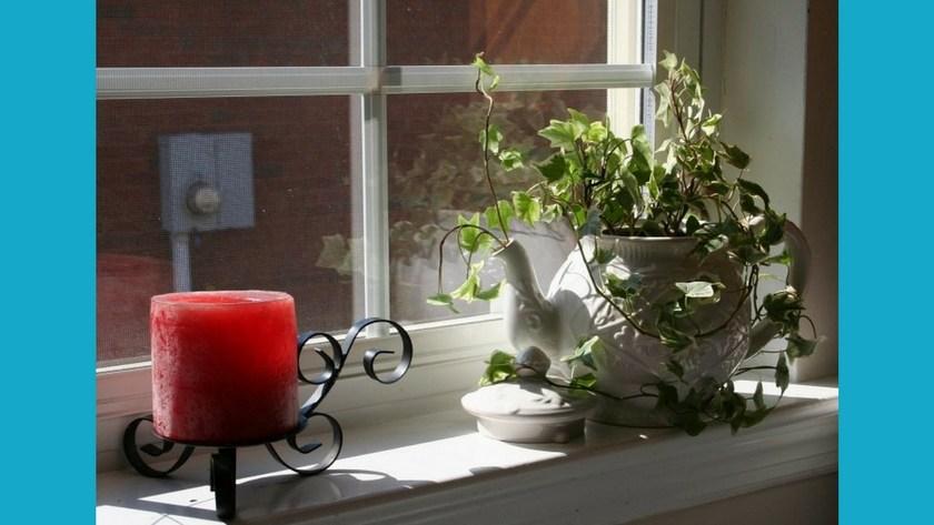 How to Make a Teapot Planter