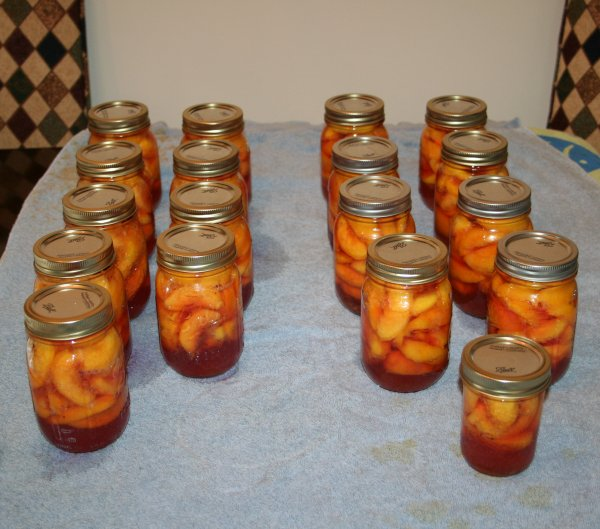 17 pints and 1 half pint (isn't it cute) of canned peaches.
