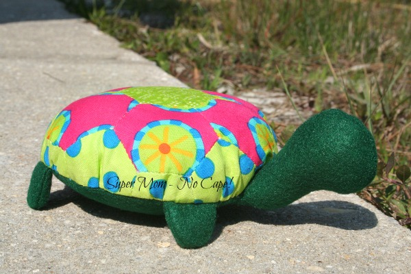 Lexie the Hexie Turtle's New BFF