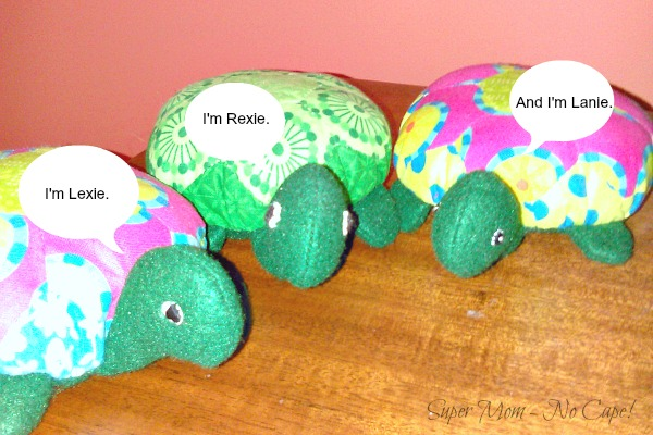 The Hexie Turtle introducing themselves