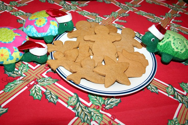 Turtles with a plate of gingerbread cookies.