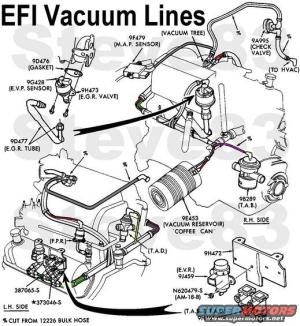 Vacuum Line RR on 1988 F150 302 50L  Ford Truck