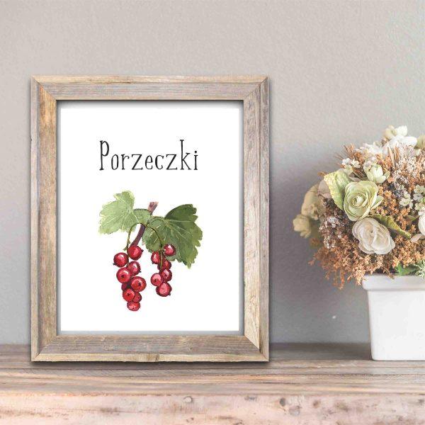 Darmowe plakaty do kuchni - plakat z owocami porzeczki
