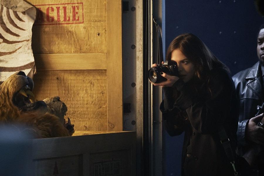 Donna Troy (Conor Leslie) dans la série Titans du DC Universe