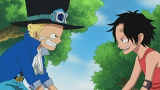 One Piece S14E13