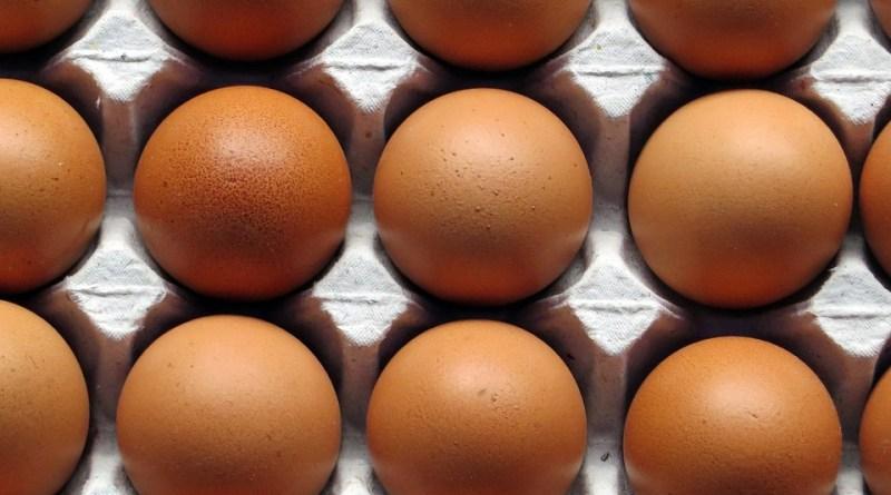 8 beneficios de los huevos: el alimento clave para ponerse en forma
