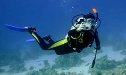 Trionfo italiano ai mondiali di fotografia subacquea