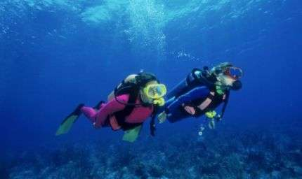 Divers Alert Network, seminari gratis on line