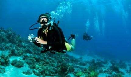 Genova Dive Show,  il festival ligure della subacquea