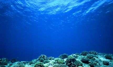 Onde acustiche per la tutela del mare