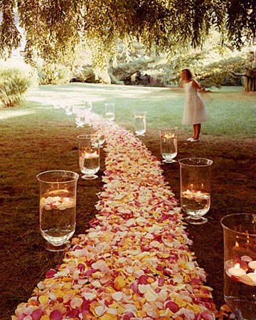 Petal Aisle Runner for Wedding