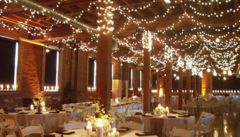 Wedding Hall Decor - Tulle and Twinkle Lights |