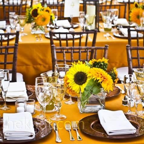 Brown and yellow Wedding Colors
