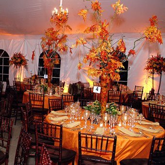 Fall wedding reception - Branches centerpieces in orange
