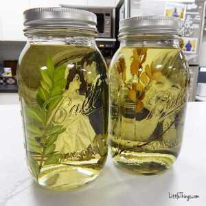 Vintage mason jars with pictures in oil.