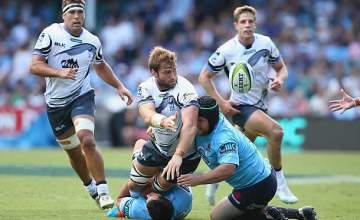 Ben McCalman re-joined the Western Force earlier this week