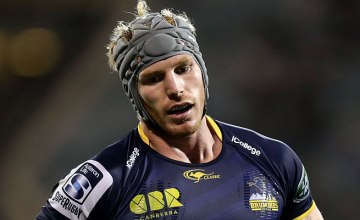 David Pocock could return for the Brumbies