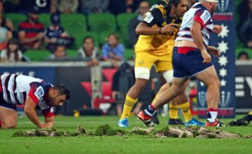 AAMI Park in Melbourne has had a problematic surface this seaso