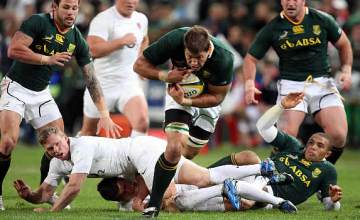 Willem Alberts has been called into the Springbok squad