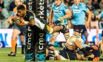 Isi Naisarani of the Brumbies will play Super rugby for the Rebels in 2019