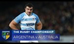 Rugby Championship, Australia, Argentina, Wallabies, All Blacks, Bledisloe Cup, Rugby Championship Video Highlights ,Video Highlights, Video,