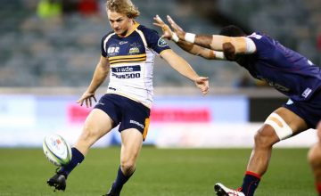 Joe Powell has been named in the Brumbies starting line up.