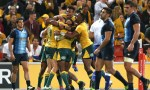 Australia celebrate Reece Hodge's try in their 16-10 Rugby Championship win over Argentina at Suncorp Stadium, Brisbane